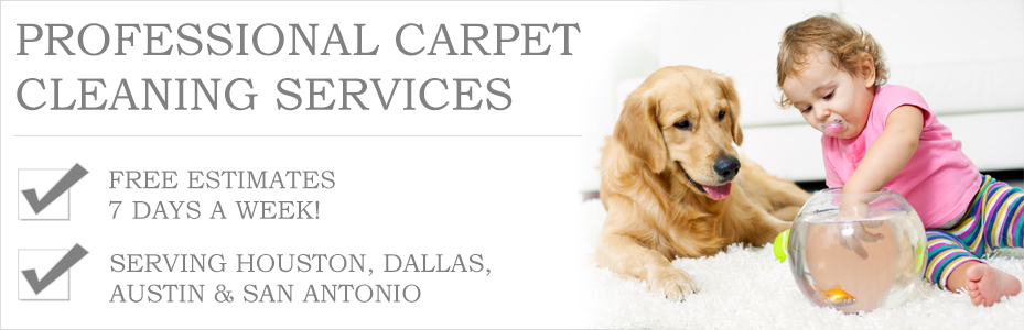 steamer carpet Coppell tx